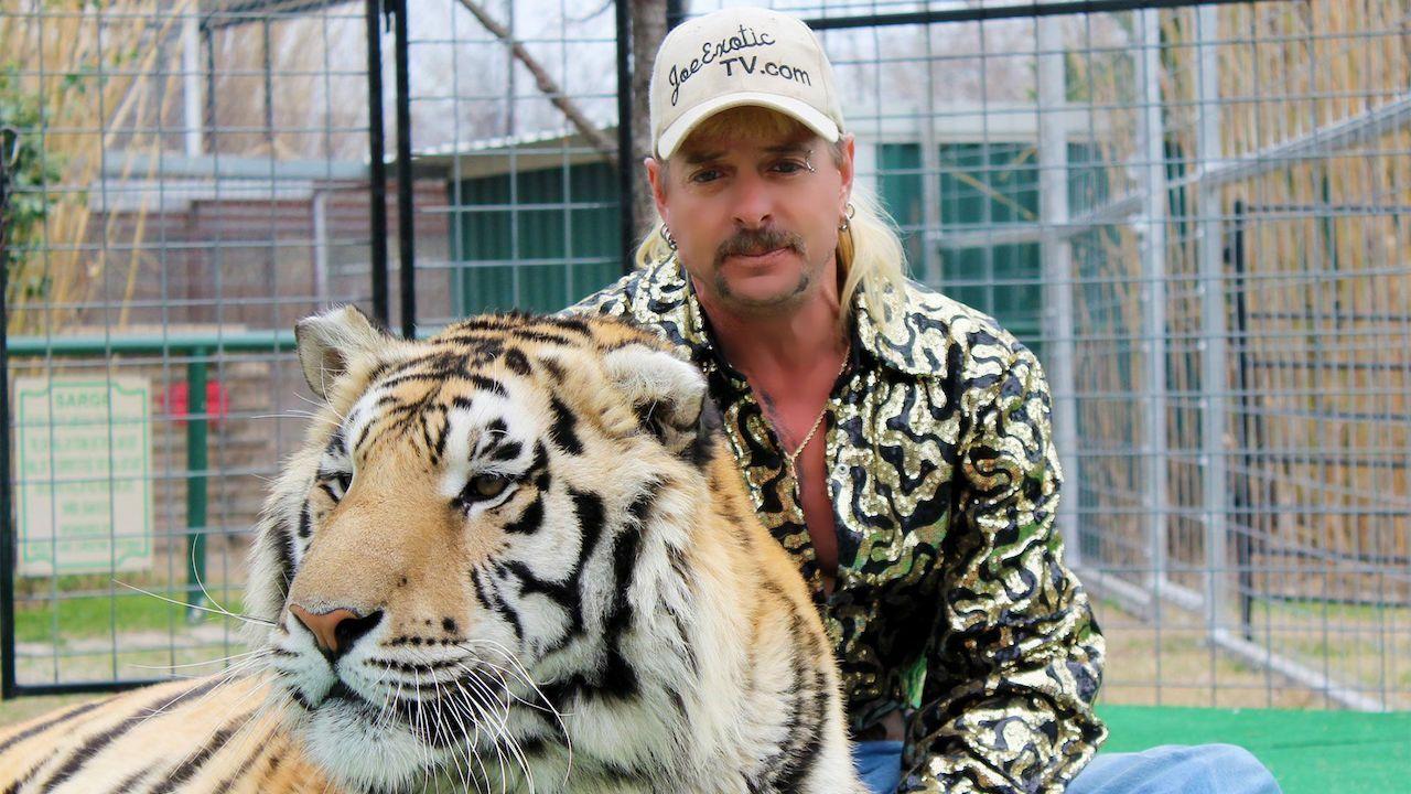 Pán tygrů se vrací. Netflix odvysílá 2. řadu krimi hitu ještě letos
