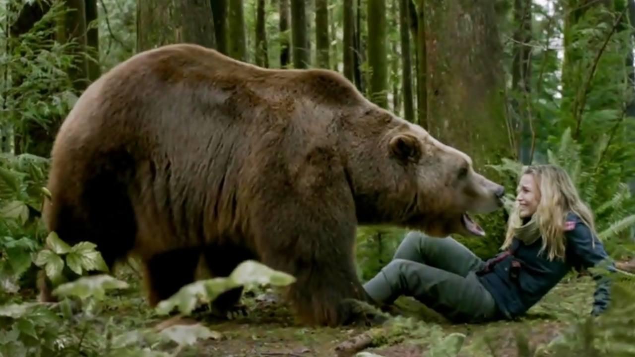 Grizzly zabiják (2015)