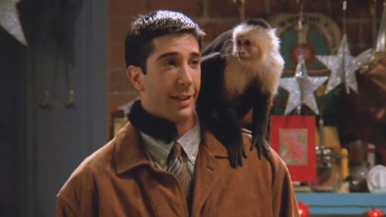 Monica musela mít všude taháky