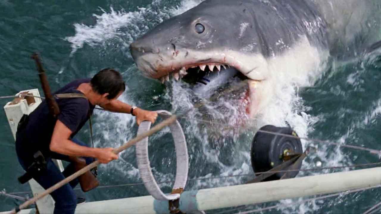 9 filmů se žraloky, které vás přesvědčí, že v létě do Chorvatska nepojedete