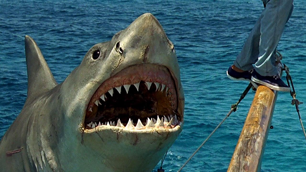 10 nejlepších žraločích filmů všech dob