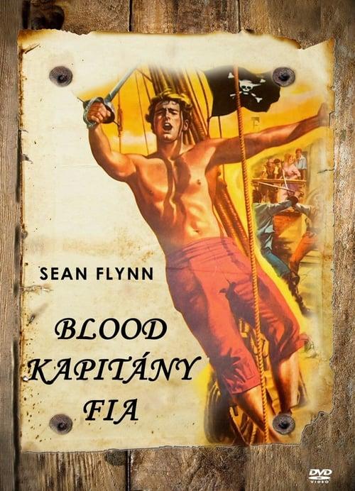 Syn kapitána Blooda - Tržby a návštěvnost