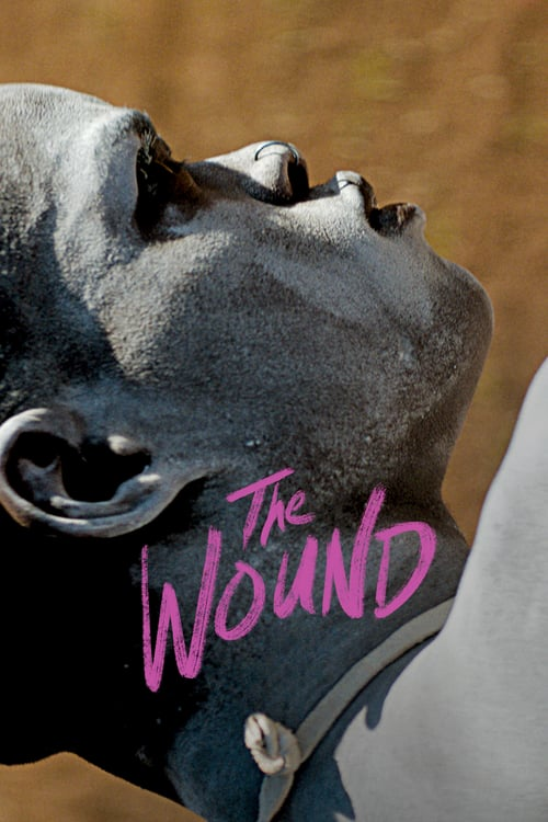 The Wound online