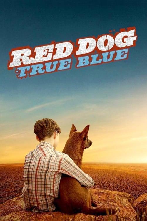 Rudý pes: Blue online