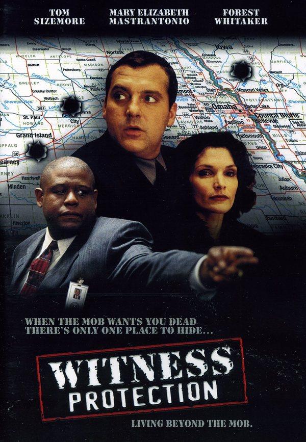 Ochrana svědků online
