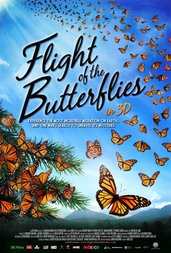 Flight of the Butterflies online