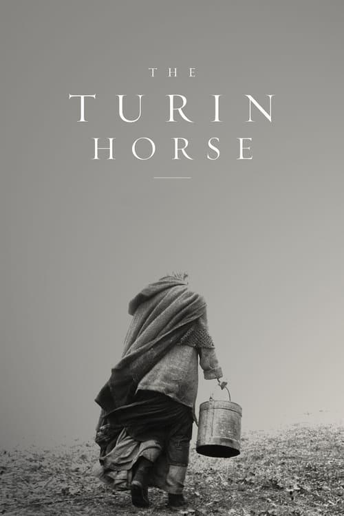 Turínský kůň online