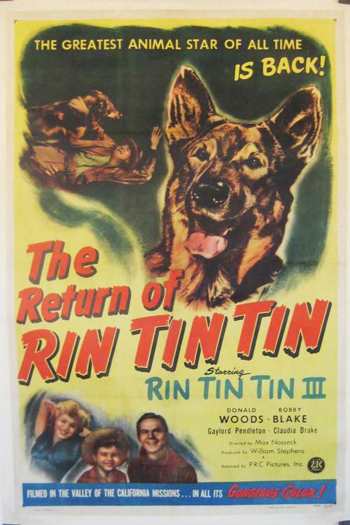The Return of Rin Tin Tin online