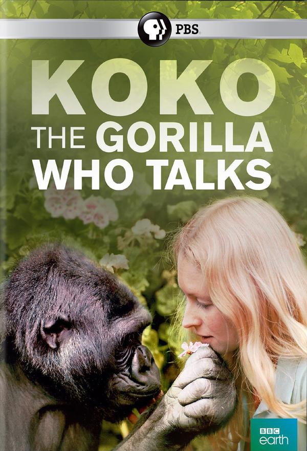 Koko: The Gorilla Who Talks online
