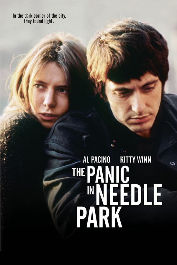 The Panic in Needle Park online
