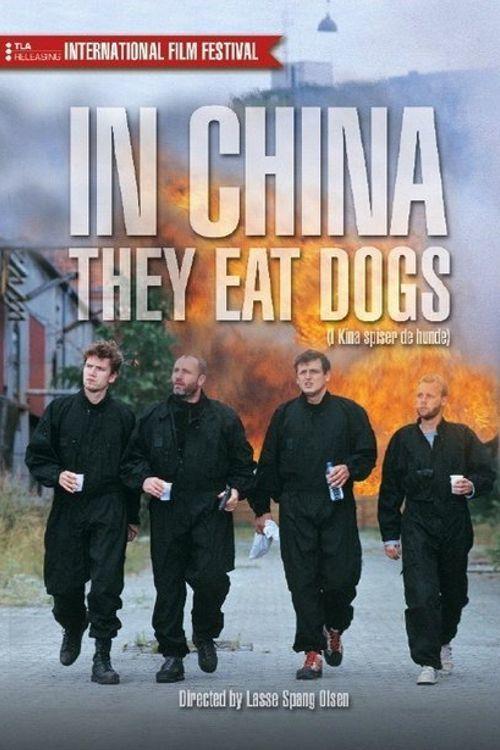 V Číně jedí psy online