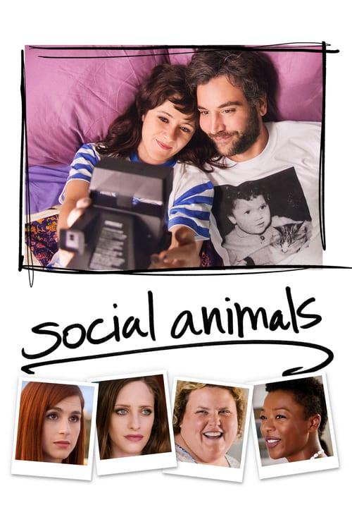 Social Animals online