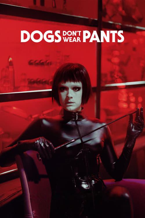 Psi nenosí kalhoty online