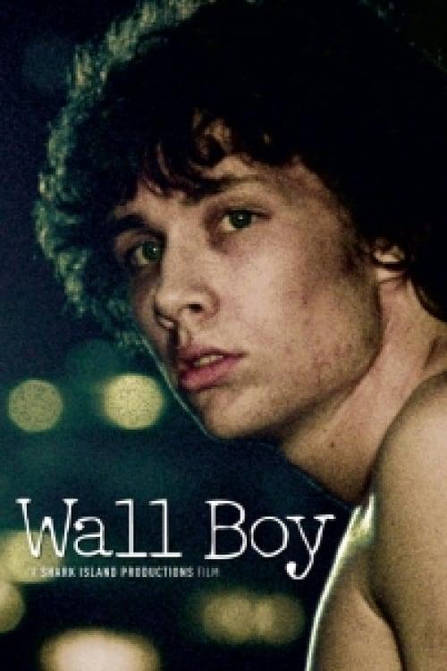 Wall Boy online