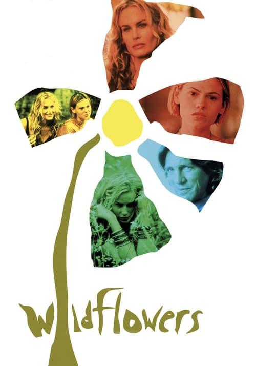 Wildflowers online