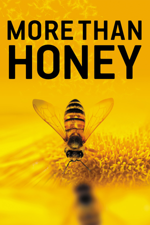 More Than Honey online