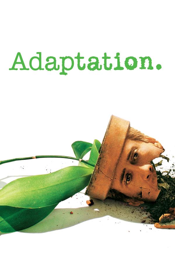 Adaptace online