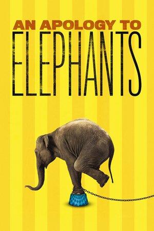 Omluva slonům online