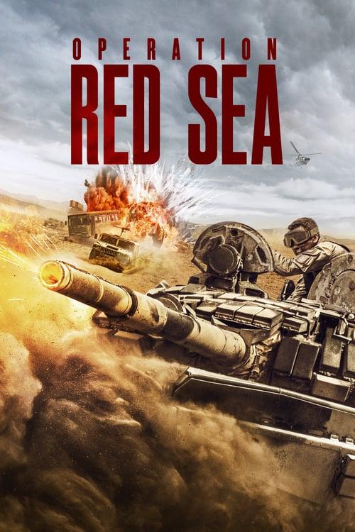 Operation Red Sea - Tržby a návštěvnost