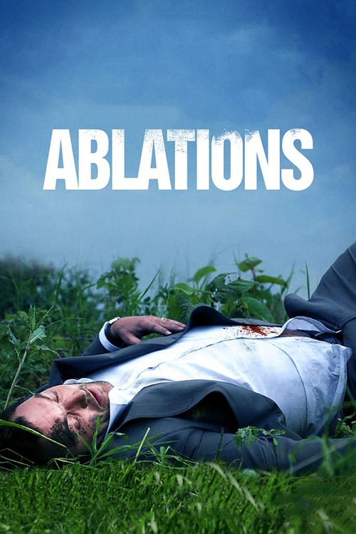 Ablations online