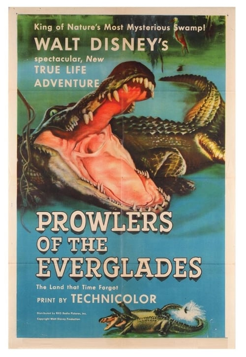Prowlers of the Everglades online