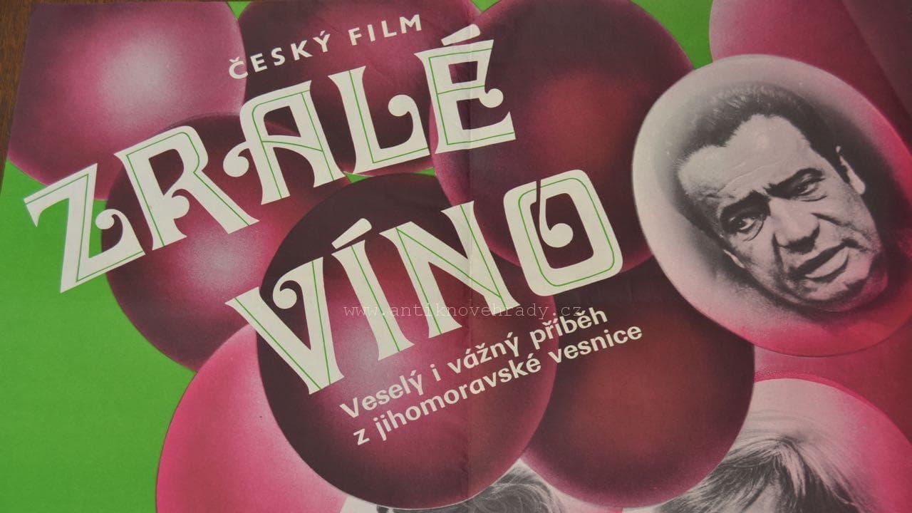 Zralé víno - Tržby a návštěvnost