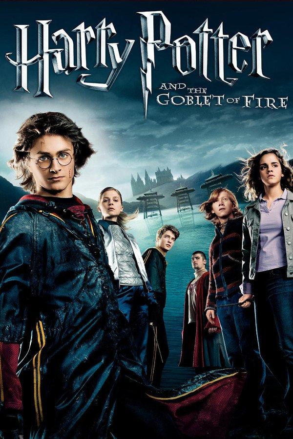 Harry Potter a Ohnivý pohár - Tržby a návštěvnost