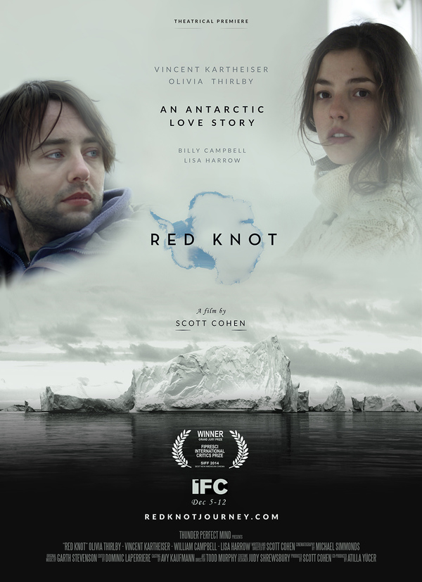 Red Knot online