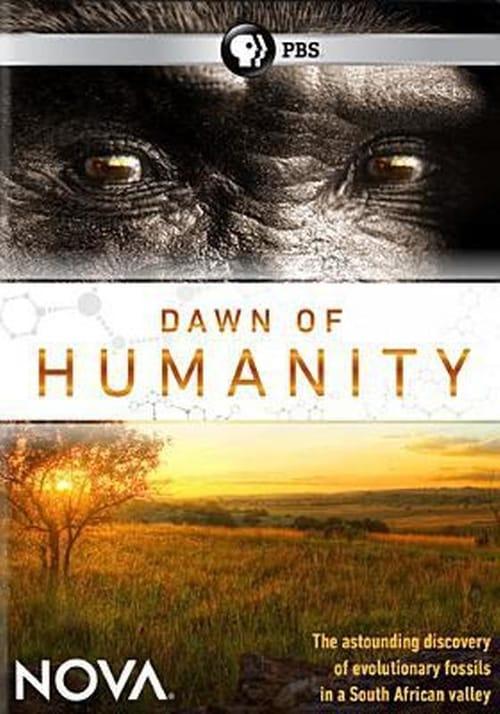 NOVA: Dawn of Humanity online
