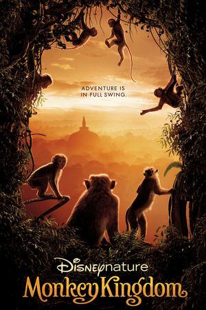 Monkey Kingdom online