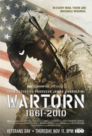 Neviditelné rány války 1861-2010 online