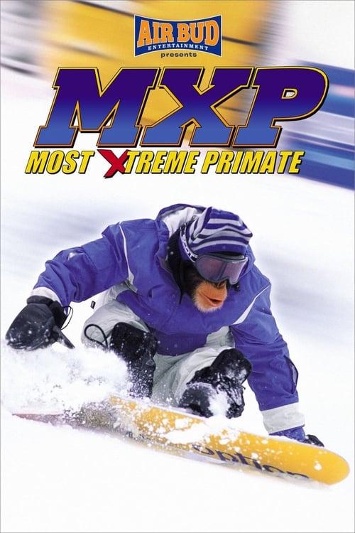 MXP - Mimořádně extrémní primát online