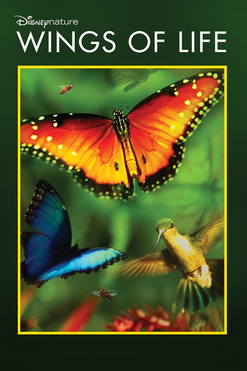 Wings of Life online