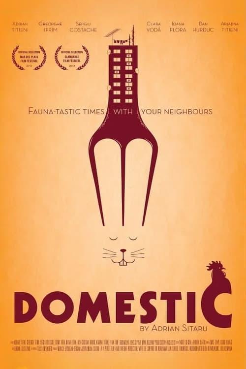 Domestic online