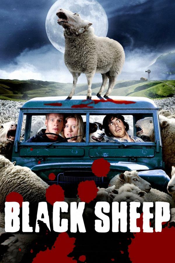 Černé ovce online