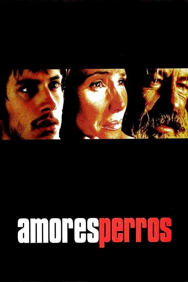 Amores perros - Láska je kurva online
