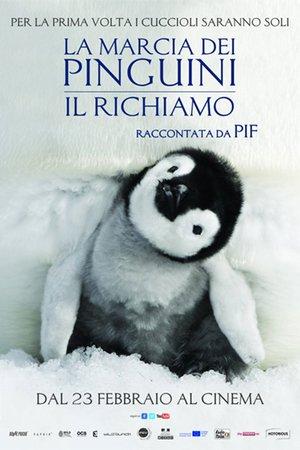 Putování tučňáků: Volání oceánu - Tržby a návštěvnost