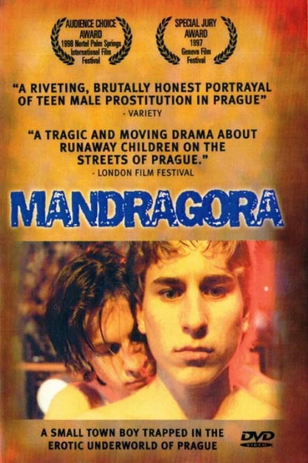 Mandragora online
