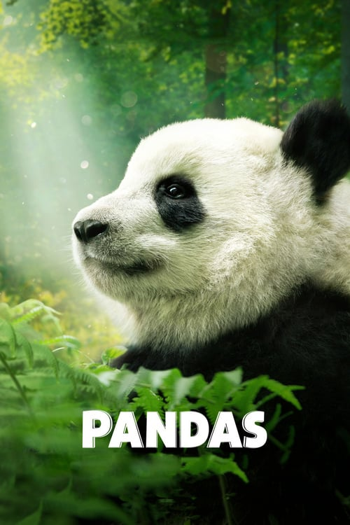 Pandas online