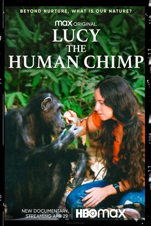 Lucy the Human Chimp online