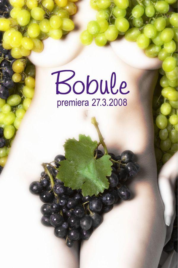 Bobule - Tržby a návštěvnost