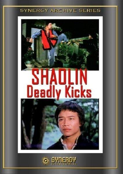 Shaolin Deadly Kicks online