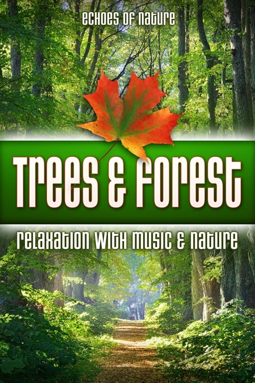 Trees & Forest: Echoes of Nature Relaxation with Music & Nature online