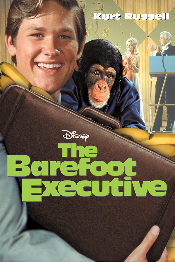 The Barefoot Executive online