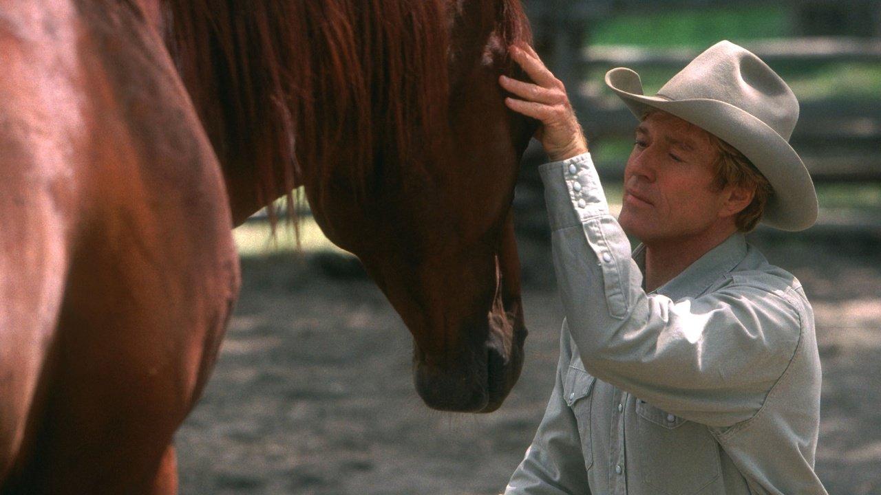 Zaříkávač koní - Tržby a návštěvnost