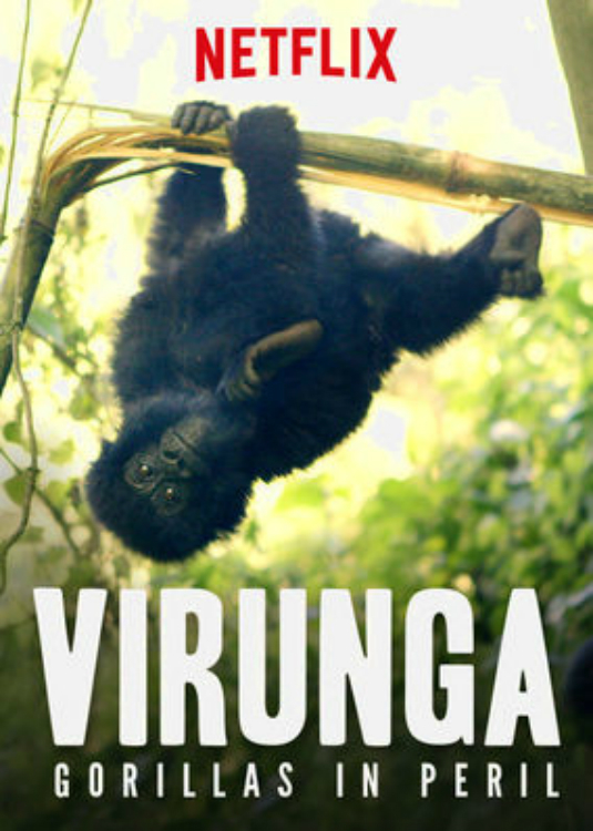 Virunga: Gorillas in Peril online