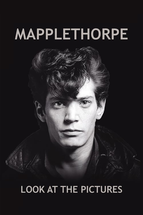 Mapplethorpe: Look at the Pictures online
