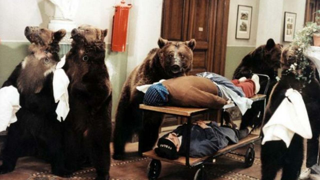 Šest medvědů s Cibulkou - Tržby a návštěvnost