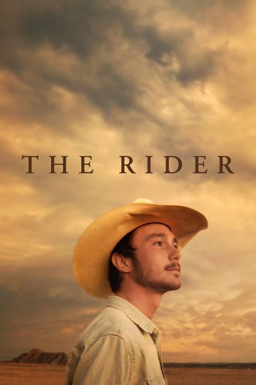 Jezdec online