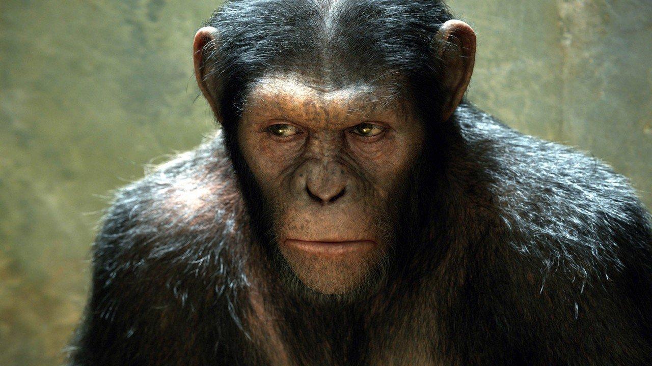 Zrození Planety opic online